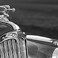 1942 Packard Darrin Convertible Victoria Hood Ornament by Jill Reger