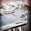 1948 Jaguar Mark Iv Drophead Coupe Hood Ornament by Jill Reger