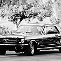 1965 Shelby Prototype Ford Mustang  by Jill Reger