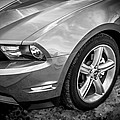 2010 Ford Mustang Convertible Bw by Rich Franco