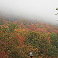 A Foggy Autumn Day At The United States Military Academy At West by James Connor