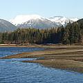 Alaskan Beauty by Jessica Foster