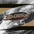 Anaheim Ducks by Joe Hamilton