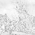 Battle Of Princeton, 1777 by Granger
