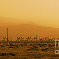 California Oil Field Under Amber Sky by B Christopher