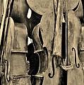 4 Cellos Sepia by Rob Hans