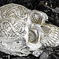 Celtic Skulls Symbolic Pathway To The Other World by LeeAnn McLaneGoetz McLaneGoetzStudioLLCcom