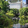 Central Park by Brian Jannsen