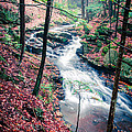 Chesterfield Gorge New Hampshire by Edward Fielding