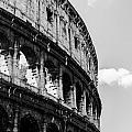 Colosseum - Rome Italy by Andrea Mazzocchetti