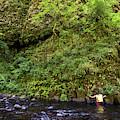 Columbia River Gorge, Oregon, Usa by David Hanson
