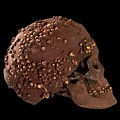 Cro-magnon Fossil Skull by Philippe Psaila/science Photo Library