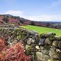 Dartmoor by Joana Kruse