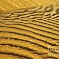 Desert Sand Dune by Ezra Zahor