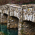 Dogwood Canyon Nature Park Near Branson Mo by Cindy Tiefenbrunn