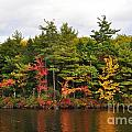 Fall Foliage In New England by Staci Bigelow