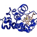 Haemoglobin Molecule by Science Photo Library