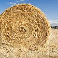 Hay Bales by Tim Hester
