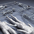 Human Cloning by Science Picture Co