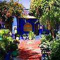 Majorelle Garden Marrakesh Morocco by Ralph A  Ledergerber-Photography