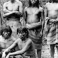 Native Brazilians by Granger