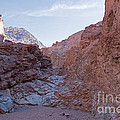 Natural Bridge Canyon Death Valley National Park by Fred Stearns