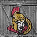 Ottawa Senators by Joe Hamilton