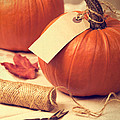 Pumpkins by Amanda Elwell