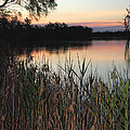 River Murray Sunset Series 1 by Carole-Anne Fooks