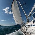 Sailing by Dobromir Dobrinov