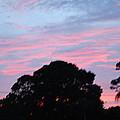 Sky Scape by Robert Floyd