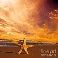 Starfish On The Beach At Sunset by Michal Bednarek