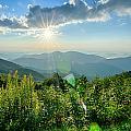 Sunrise Over Blue Ridge Mountains Scenic Overlook  by Alex Grichenko