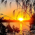 Sunset Reflections by Libby Ryding