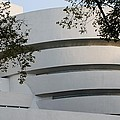 The Guggenheim by Rob Hans