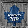 Toronto Maple Leafs by Joe Hamilton