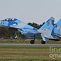 Ukrainian Air Force Su-27 Flanker by Timm Ziegenthaler