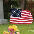Us Flag On Memorial Day by Robert D  Brozek