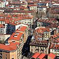 View Of Turin by Valentino Visentini