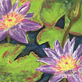 Water Lilies I by Vicki Baun Barry