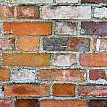 Weathered Wall by Tom Gowanlock