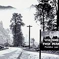 Welcome To Twin Peaks by Luis Ludzska