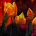 4 Yellow Tulips by Jaime Aguirre