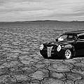 40 Flat by Steve McKinzie
