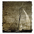 40 Sailboat - With Open Wings In A Grunge Background  by Pedro Cardona Llambias