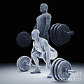 Exercise Workout by Science Picture Co