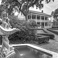 Rosedown Plantation by Photo Advocate