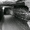 Skulls And Bones In The Catacombs Of Paris France by Richard Rosenshein