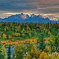 Alaska Range by Mark Newman