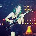 Angus Young by Sheryl Chapman Photography